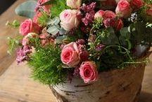 Rose/Peonie/fiori