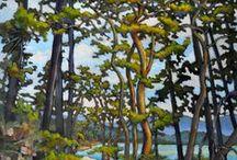 Arbutus Trees / Paintings of Arbutus Trees