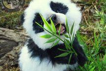 Pandas~