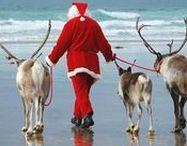 ✿ ⊱ karácsony a tengerparton