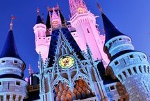 Florida  / Can't wait for my holiday to Florida next year and these are he places I am going to try and get it can't wait