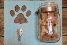 For the Pups / Recipes, Products, and DIY for the Pup in your life. Let's not forget our fur babies!