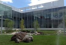 Commercial Landscape Design and Installation Service