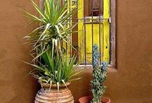 Spanish Revival Stucco Unit: Let's renovate / Spanish Revival exterior inspiration homes- remodel ideas for modern cottage