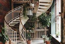 Future House Design's