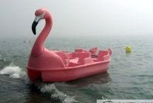 Flamingo Forever / Laundry room inspiration board