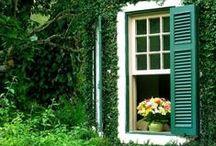 Vivere Ecologico / Storie, consigli, idee per uno stile di vita più naturale e sostenibile