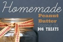 Furry Friends / Fun food and activities for your furry friends! Cats, Dogs, Birds, hamsters... you name it!