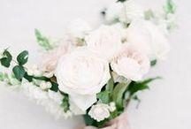 bouquet +