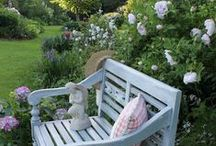 Garden Idea & Inspiriation / Inspiration for the garden