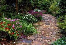 Front Garden Path / Ideas for the garden near front entrance / by Jane Mangion