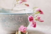✿¸¸☂~Soft whispers~☂¸¸.✿ / Shabby Chic, French Chic. Romantic Cottage accessories and pastels. Shabby shades, Sash, Roses, hand painted hearts, Ana Rosa flowers, Romantic Rose Bird Cages Shabby Chic and shabby inspiration..Pearls & Lace And so much more..... / by ¸.•♥•.¸¸.•♥•Rachel•♥•.¸¸.•♥•.¸