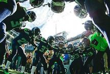 Seattle Seahawks / All things Seahawks and the mighty 12th man