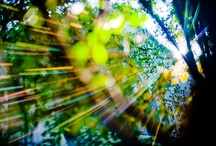 Play of light