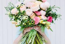 •FLOWERS• / by Erica Fulawka
