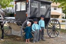 THE Amish / by Jane Hofbauer