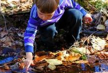 outdoor nature/gardening activites