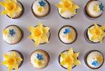 Cancer Council fundraising
