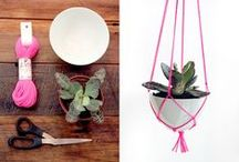 Just Hangin' / Plant hangers, plants, verticality, and a bit of DIY. / by STASH Lounge