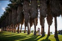 PRIVATE EXOTIC PALM BAY / A dream wedding ceremony setting on a picturesque & private palm bay with spectacular sea views. www.weddingincrete.com