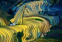 Landscapes / Gorgeous Landscapes around the World.