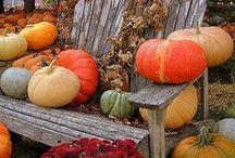Autumn / Fall in Love.