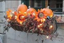 Fall decorations / Decorating for Fall / by Wendy Bowery