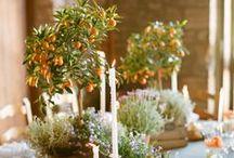 Spring Weddings/Bodas en primavera / Flowers and more flowers. Las flores serán las protagonistas....