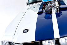 Petrol heads / Cars cars bikes n cars