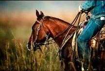 // Riding
