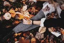 appreciating autumn / autumn // fall // leaves // autumn photography