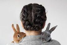 rabbits / rabbits // bunnies // pet photography