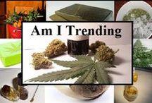 Mmj Cannabis Health / #medical #marijuana #cannabis #oil #health