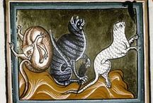 Cats in Middle Ages