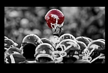 Arkansas Razorbacks / by David®