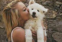 Nous Appuyons la SPCA / We Support the SPCA / www.DentisteHo.com // 514-738-8931 // Côte-des-Neiges