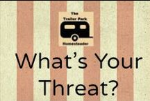 What's Your Threat? / Articles From Members of the Prepared Bloggers, Discussing What They're Preparing For.