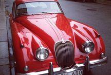 CARS / Love cars