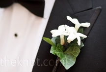 A Boutonnieres and Pocket Squares / by Anne Kordek