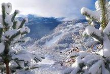 Snowfall 2016