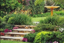 Backyards Bliss (Compact Power) / Talented landscapers transforming backyards into works of art!