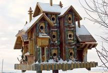 Birdhouses / by Beth Colman