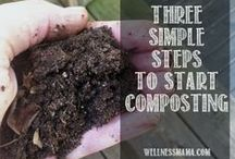 The 411 on Compost / Helpful tools, tips and facts about composting.