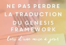 ➤ Framework Genesis / Des tutos et des conseils pour en apprendre plus sur le framework Genesis de Studiopress