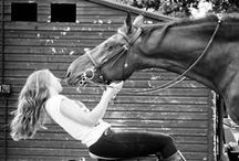 For the Love of Horses / We have 49 horses of several breeds including Tennessee Walkers, Warmbloods, Belgians and Appaloosas. We love every horse in our stable.