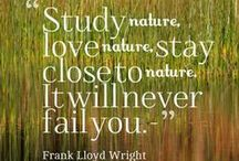 Nature Quotes / With 4,000 acres kept in a wilderness state, those of us here at Inlet Point Plantation are true believers in getting outside and enjoying nature. Let this collection of nature quotes inspire you to get outside and explore.