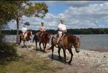 Rides with Inlet Point / Take a look at some of the breathtaking views from our horseback tours and then book your ride with Inlet Point Plantation.