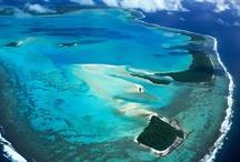 Coral Oceans