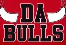 DaBulls!