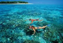BelAfrique - Mauritius / BelAfrique - your personal travel planner. We're a travel company with the belief that the passion we have for Africa, its diverse people, abundant wildlife & stunning landscapes, needs to be shared with the rest of the world. We offer tailor-made itineraries to meet your every need. Contact our team of experienced travel consultants (we also speak French and Flemish) and let's start planning your African adventure of a lifetime! www.BelAfrique.com